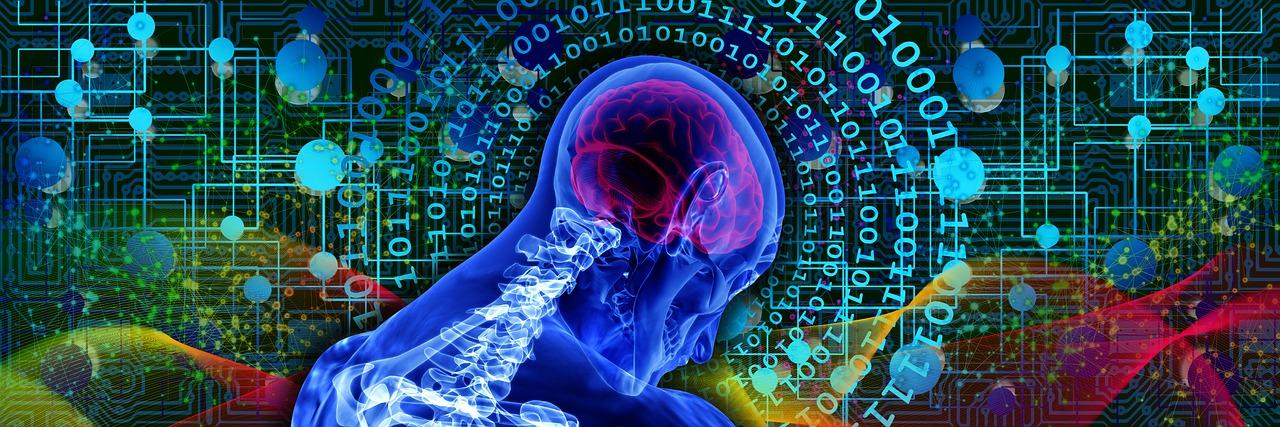 Il Sé corporeo: sistemi multisensoriali e definizione dei confini sé-mondo