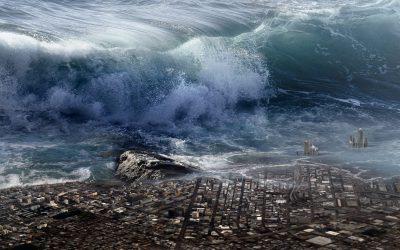 L'ombra dello tsunami: recensione di Giancarlo Dimaggio